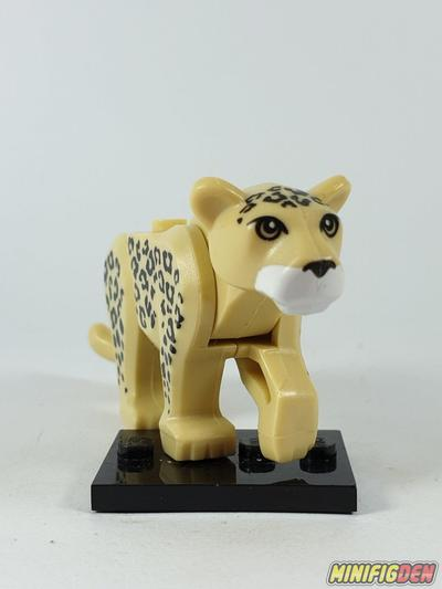 Cheetah - Animals - Other